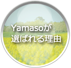 Ymasoが選ばれる理由