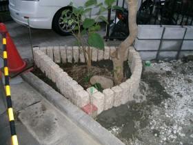 植栽帯 ピンコロ設置